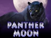Игра Panther Moon в казино 777 - играть бесплатно