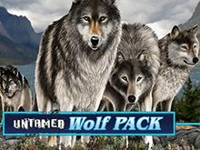 Игровой аппарат Untamed Wolf Pack в Эльдорадо клубе – тематика слота