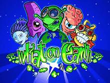 Аппарат What On Earth? в Эльдорадо казино – рейтинги игры