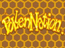 Игровой аппарат Pollen Nation от Microgaming дарит рекордные выплаты
